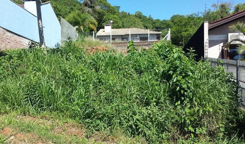 TerrenoVenda em Três Coroas no bairro Vila Nova