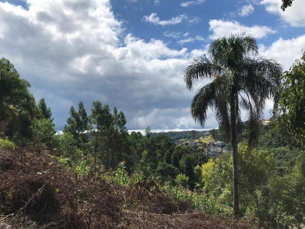 TerrenoVenda em Gramado no bairro Vale das Colinas