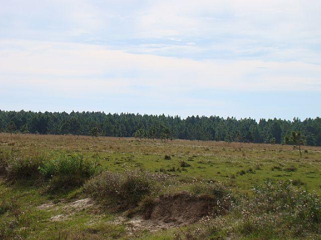 Área de terraVenda em Mostardas no bairro -