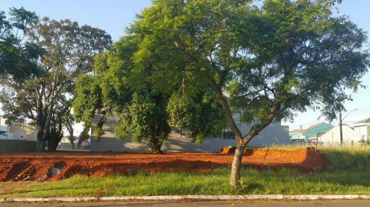 TerrenoVenda em CANOAS no bairro SÃO JOSÉ