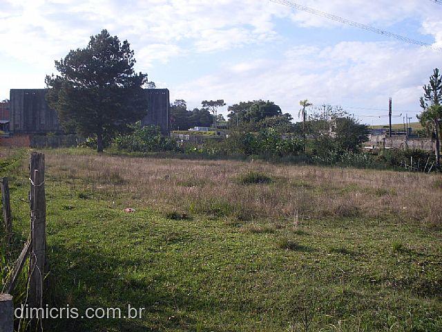 TerrenoVenda em Sapiranga no bairro 4 Colonias