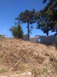 TerrenoVenda em Campo Bom no bairro Morada da Colina