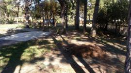 TerrenoVenda em Cidreira no bairro Lagoa Country Clube