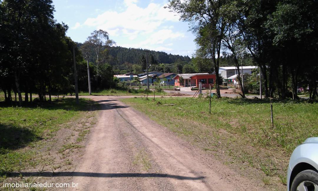 TerrenoVenda em Bom Principio no bairro Morro Tico-Tico