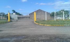 TerrenoAluguel em São Leopoldo no bairro Scharlau