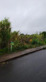 TerrenoVenda em NOVO HAMBURGO no bairro Lomba Grande