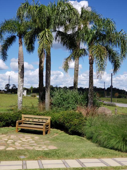 TerrenoVenda em Caxias do Sul no bairro Pedancino