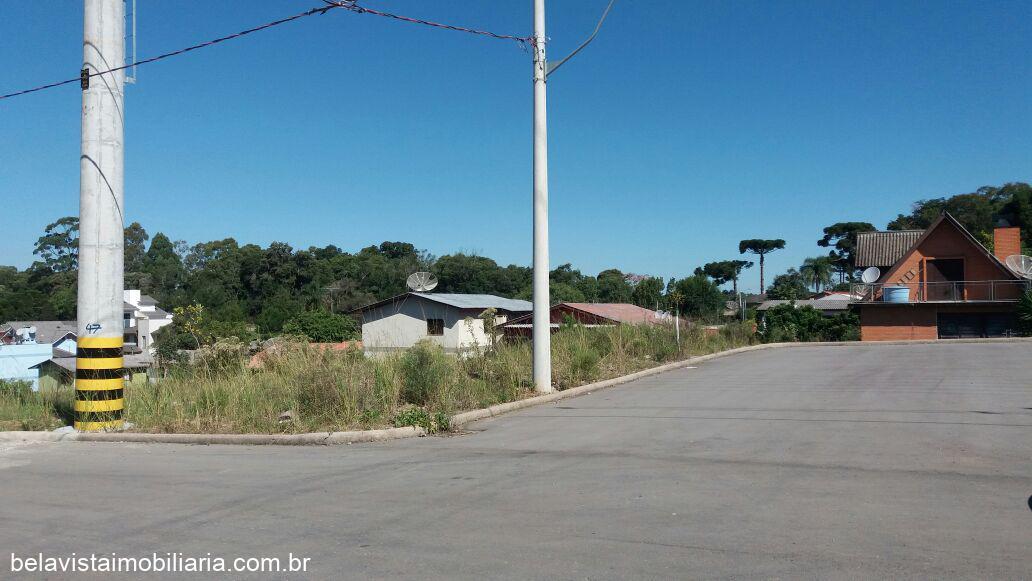 TerrenoVenda em Caxias do Sul no bairro Bela Vista