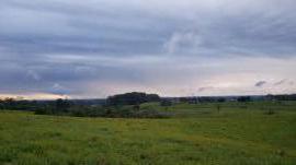 Áreas de terras/áreas ruraisVenda em Nova Santa Rita no bairro Sanga Funda