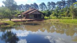 Casa residencialAluguel em Portão no bairro Zona Rural