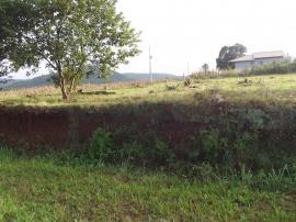 Área de terraVenda em Presidente Lucena no bairro Linha Nova Baixa