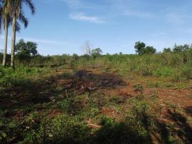 Área de terraVenda em Lindolfo Collor no bairro 14 Colonias