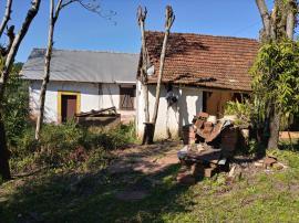 Chácara / sítioVenda em São José do Hortêncio no bairro Capela do Rosário