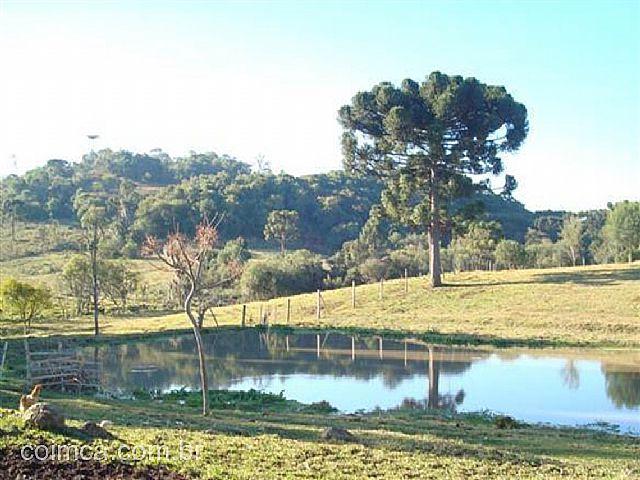 Terreno Rural #461v em Criúva
