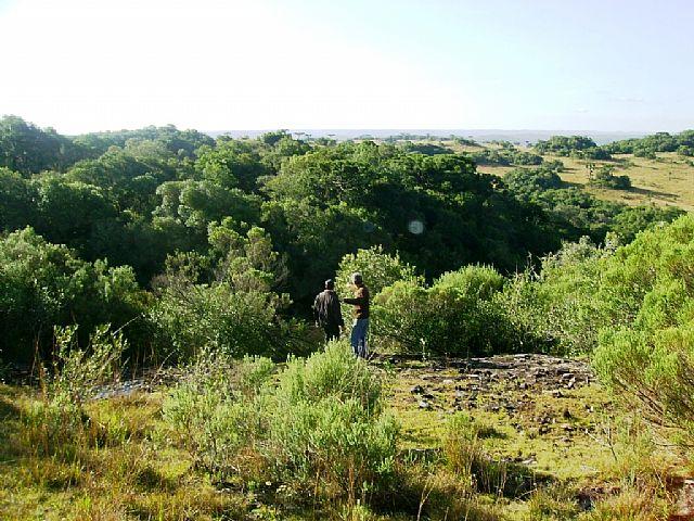 Terreno Rural #047v em Caxias do Sul