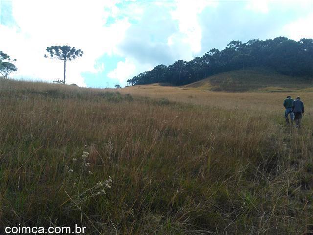 Terreno Rural #1153v em Caxias do Sul