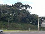 Terreno em Caxias do Sul no Bairro Cinquentenário