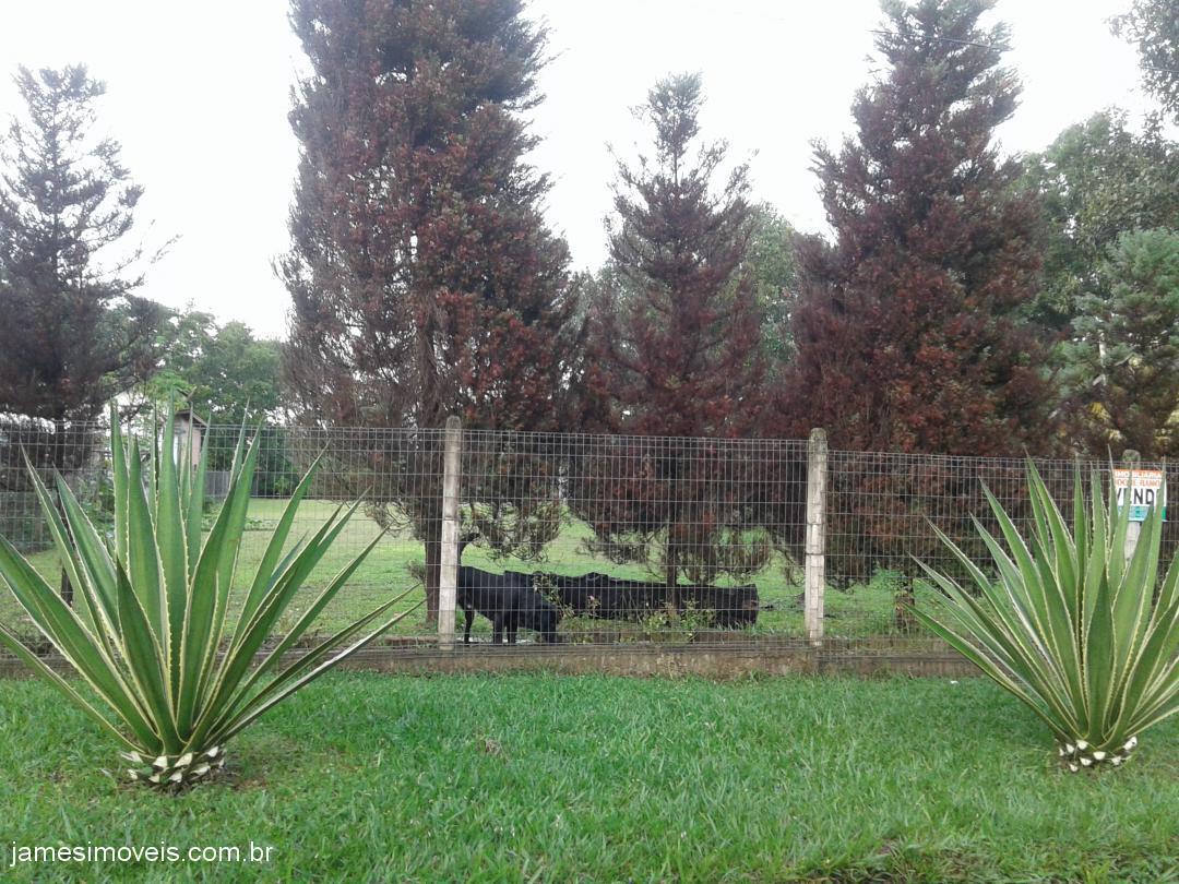 TerrenoVenda em Nova Santa Rita no bairro Califórnia